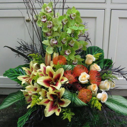 Protea and Orchids